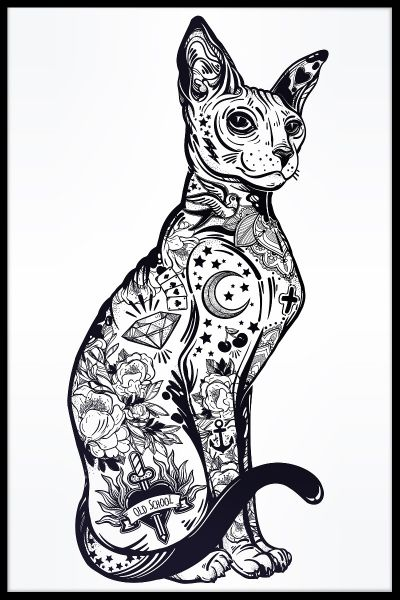 Cat Sphynx Illustration Poster