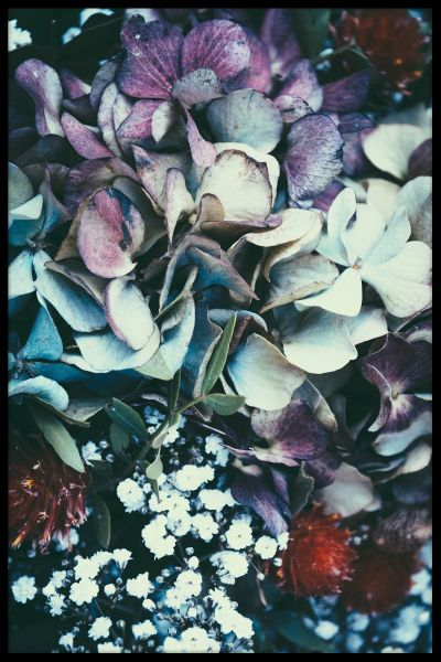 Autumn Flowers N02 Poster