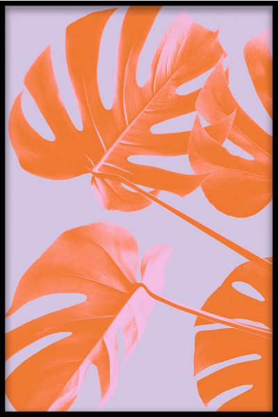 Abstract Monstera N04 Poster