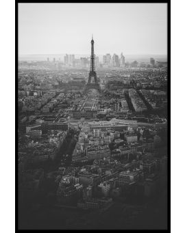 View Over Paris Poster