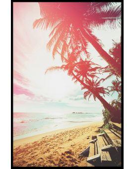 Beach Palm Tree Poster