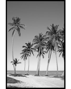 Black & White Beach N02 Poster