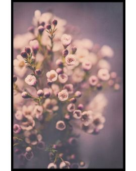 Beautiful Bouquet N02 Poster