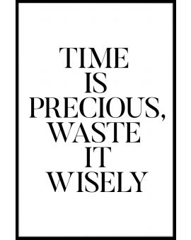 Waste It Wisely Poster