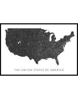 USA Map N02 Poster
