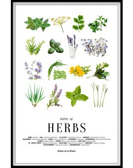 Table of Herbs Poster