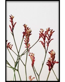 Abstract Botanical N02 Poster